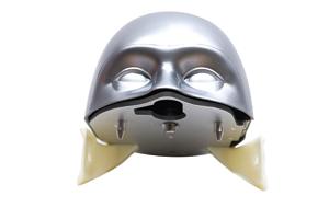 Phantom Head with Face Mask
